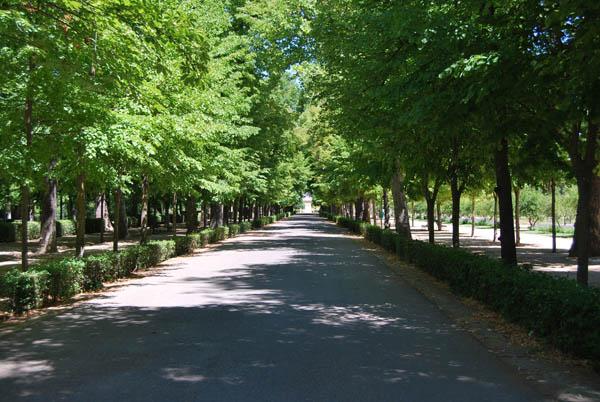 Paseo fotografico por el jardin del principe en aranjuez for El jardin del principe