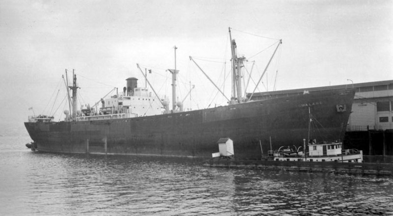 ss william h. wilmer.jpg