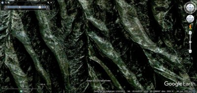 Hoja de parra en Google Earth